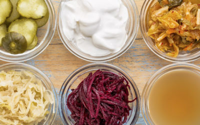 Do You Know Your Prebiotics from Your Probiotics?